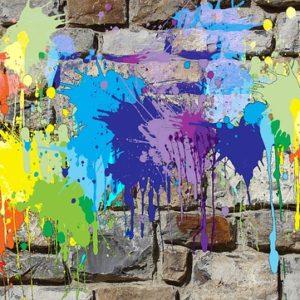 Visite guidée Street Art à Voiron